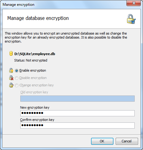 Encryption manager