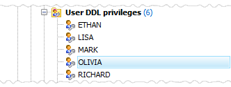 User DDL privileges list