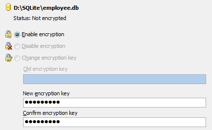 Encryption management window